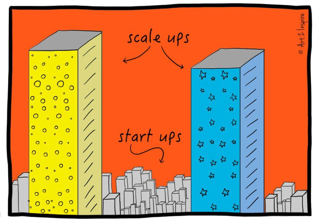 Startup vs Scaleup